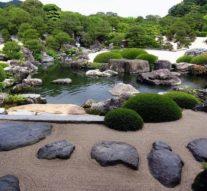 Как создать сад камней