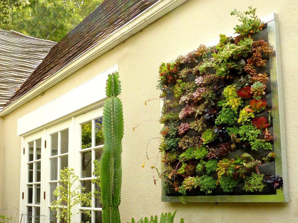 создание вертикального сада
