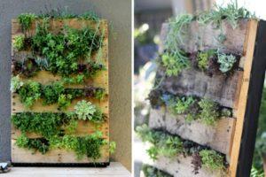 сделать вертикальный сад