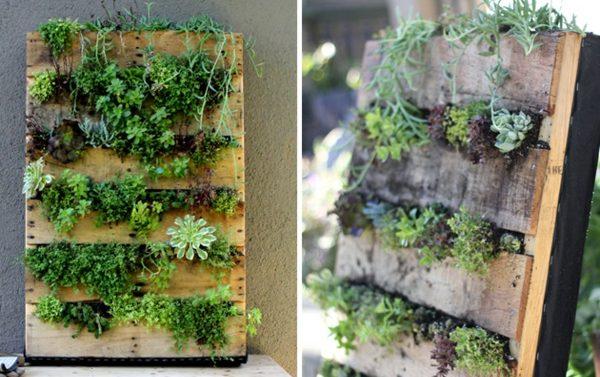 Как сделать вертикальный сад