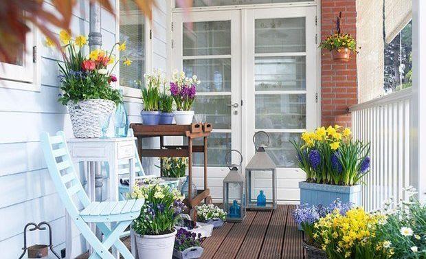 Как оформить лоджию цветами
