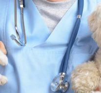 Ваш ветеринарный доктор
